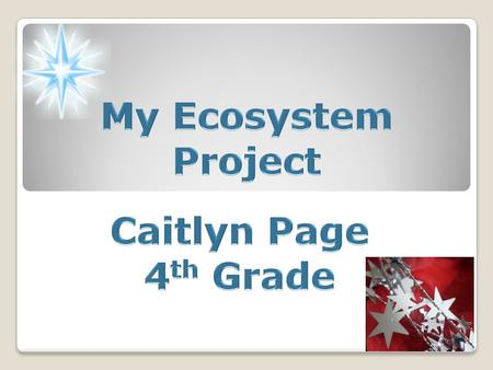 My Ecosystem Project Caitlyn Page 4th Grade.