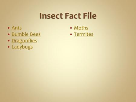 Insect Fact File Ants Bumble Bees Dragonflies Ladybugs Moths Termites.