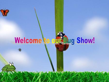 Welcome to our Bug Show!.