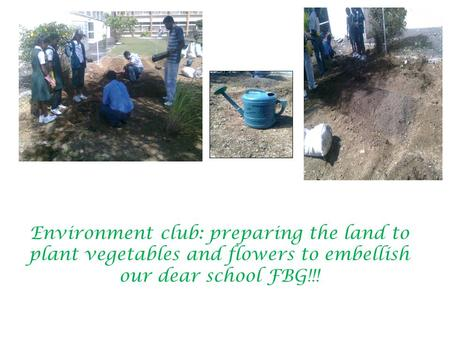 Environment club: preparing the land to plant vegetables and flowers to embellish our dear school FBG!!!