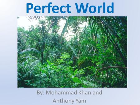 Perfect World By: Mohammad Khan and Anthony Yam. SPIKED MAIDEN PLANT Type: Producer Range: Scatter throughout the tropical rainforest Population Size: