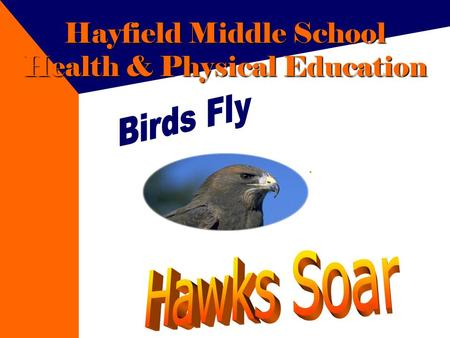Hayfield Middle School Health & Physical Education.