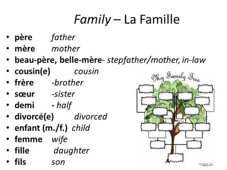 Family – La Famille père father mère mother beau-père, belle-mère- stepfather/mother, in-law cousin(e) cousin frère -brother sœur -sister demi - half divorcé(e)