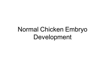 Normal Chicken Embryo Development. About the Chicken The domestic chicken can be traced back to four species of wild jungle fowl from Southeast Asia.