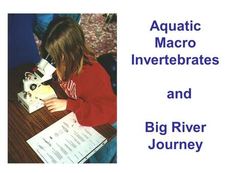 Aquatic Macro Invertebrates and Big River Journey.