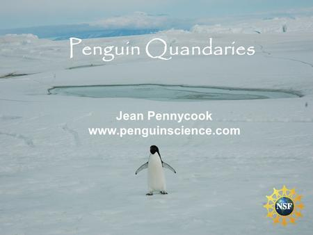Penguin Quandaries Jean Pennycook www.penguinscience.com.