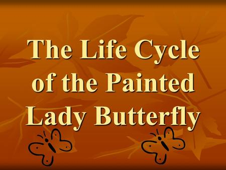 The Life Cycle of the Painted Lady Butterfly. The beauty of a butterfly……