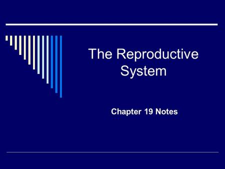 The Reproductive System Chapter 19 Notes. What are the parts of the Female Reproductive System? Females: All reproductive organs are located on the inside.