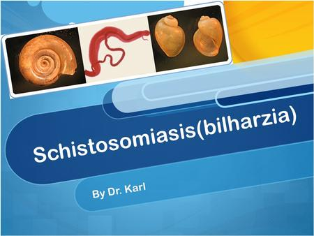 Schistosomiasis(bilharzia) By Dr. Karl. Sometimes referred to as bilharzias, bilharziasis, or snail fever, is a parasitic disease caused by trematode(flukes)