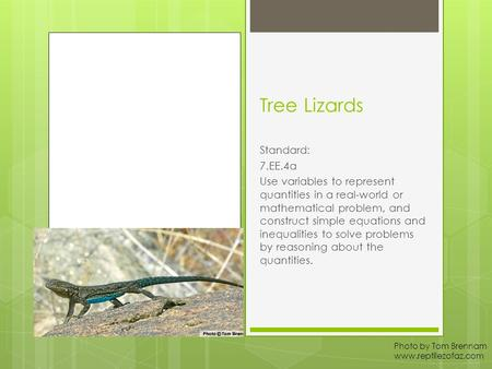 Tree Lizards Standard: 7.EE.4a Use variables to represent quantities in a real-world or mathematical problem, and construct simple equations and inequalities.