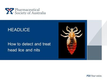 HEADLICE How to detect and treat head lice and nits.