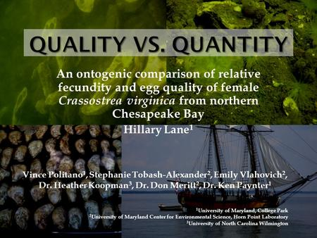 An ontogenic comparison of relative fecundity and egg quality of female Crassostrea virginica from northern Chesapeake Bay Hillary Lane 1 Vince Politano.