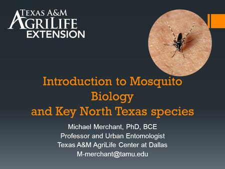Introduction to Mosquito Biology and Key North Texas species Michael Merchant, PhD, BCE Professor and Urban Entomologist Texas A&M AgriLife Center at Dallas.