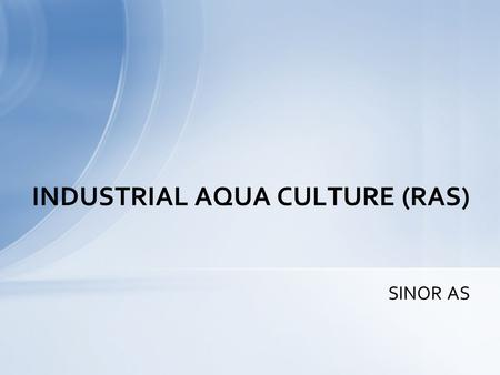SINOR AS INDUSTRIAL AQUA CULTURE (RAS). CRUNCHY TROUT EGGS – CAVIAR.