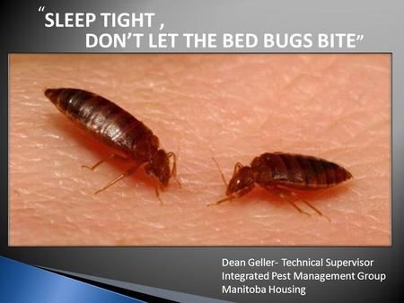 SLEEP TIGHT , DON'T LET THE BED BUGS BITE""
