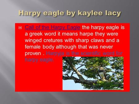 Call of the Harpy Eagle the harpy eagle is a greek word it means harpe they were winged cretures with sharp claws and a female body although that was never.