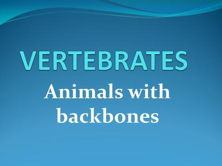 Animals with backbones