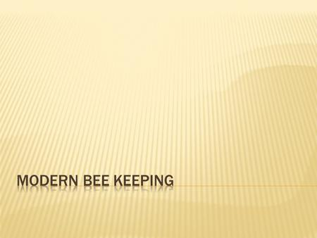 Modern bee keeping.