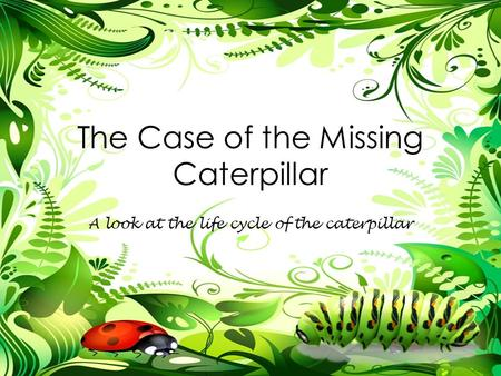 The Case of the Missing Caterpillar