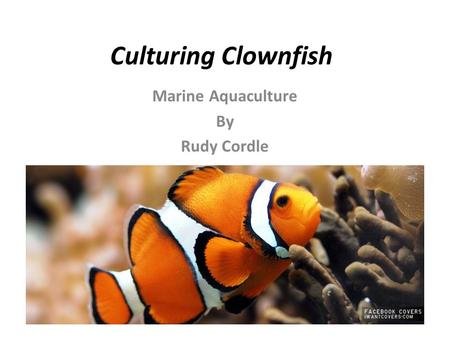 Marine Aquaculture By Rudy Cordle