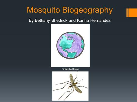 Mosquito Biogeography By Bethany Shedrick and Karina Hernandez Picture by Karina.