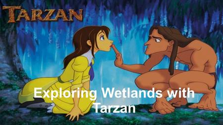 Exploring Wetlands with Tarzan. What is a Wetland? A wetland is an area coved with shallow water. There are different types of plants and animals that.