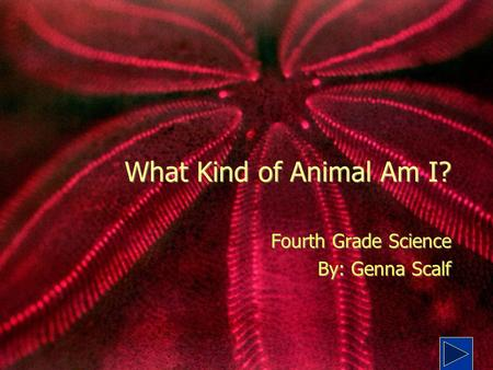 Fourth Grade Science By: Genna Scalf