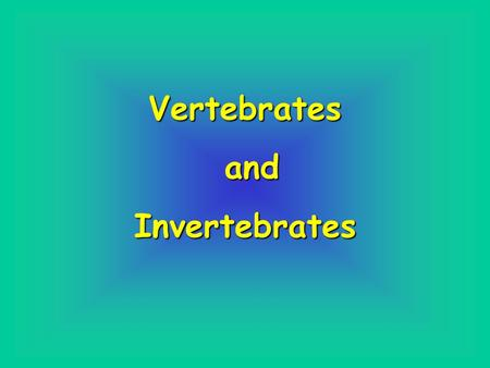 Vertebrates and Invertebrates.