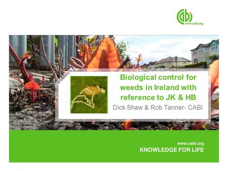 Biological control for weeds in Ireland with reference to JK & HB