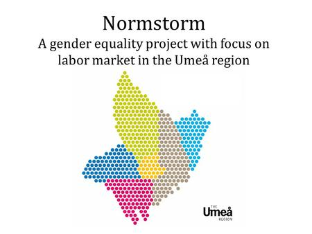 Normstorm A gender equality project with focus on labor market in the Umeå region.