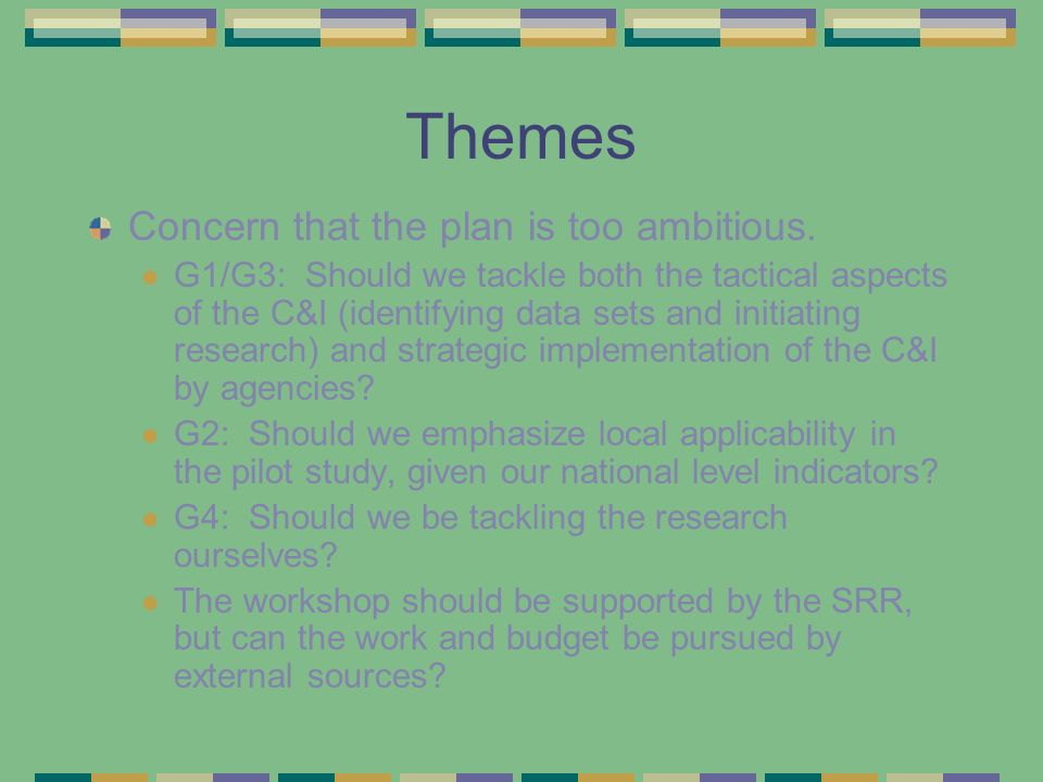 Themes (cont.) Prioritization: Participants agreed that the C&I needed to be prioritized first and then the data gaps and research questions could be pursued.
