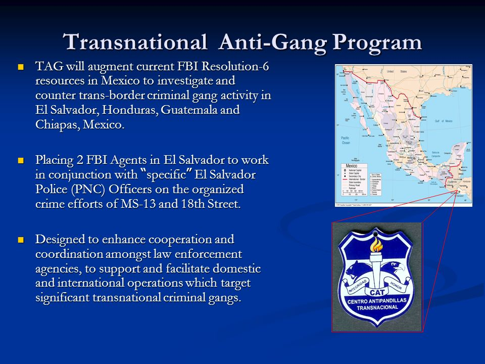 Other Foreign Initiatives Foreign Police Officer Exchange Program.