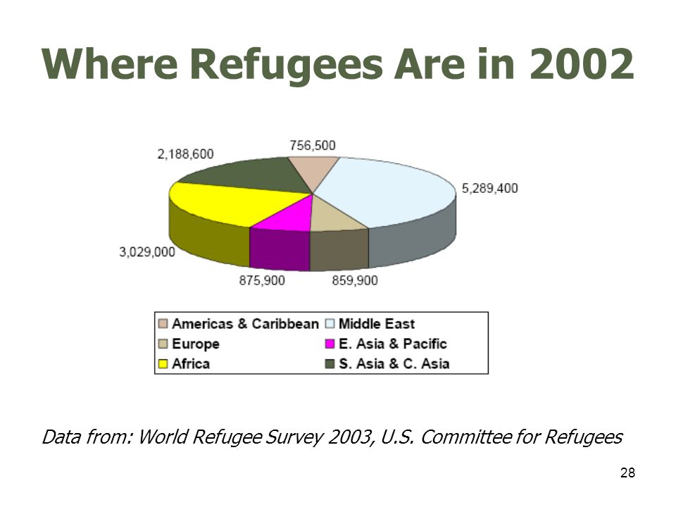 29 Internally Displaced Persons Data from: World Refugee Survey 2003, U.S. Committee for Refugees