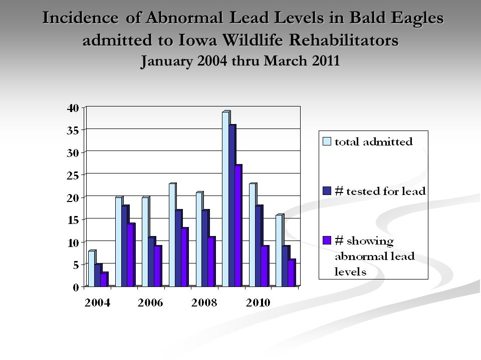 Eagles admitted with abnormal lead levels - by the month - January 2004 thru March 2011