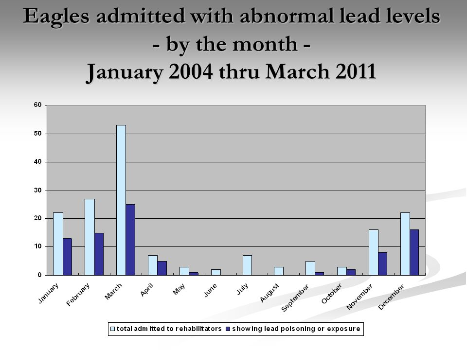 YearTotal # of eagles admitted to Iowa wildlife rehabilitators # tested for lead (% of total) # showing lead exposure # showing lead poisoning (lethal without treatment) % of total showing abnormal lead levels 20048 5 (62.5%) 0337.5% 200520 18 (90.0%) 11370.0% 200620 11 (55.0%) 2745.0% 200723 17 (73.9%) 21156.5% 200821 17 (80.9%) 2952.4% 200939 36 (92.3%) 62169.2% 201023 18 (78.3%) 5439.1% 2011 (thru March) 16 9 (56.3%) 2437.5% TOTAL170131207254.1%