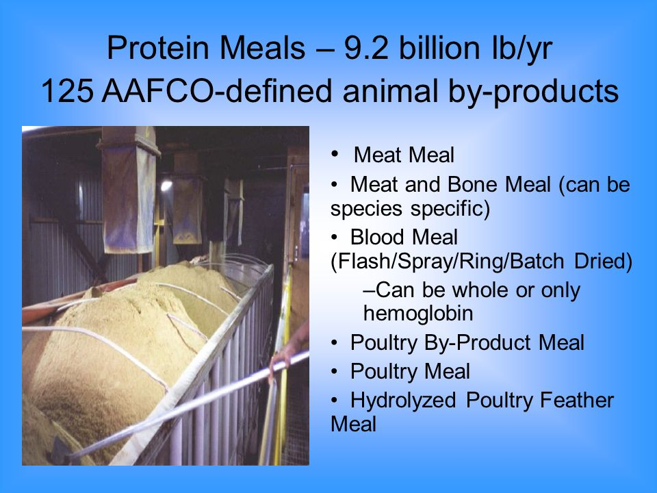 Stabilized Poultry Fat Stabilized Pet Food Poultry Fat Hydrolyzed Poultry Feather Meal Stabilized Poultry Protein Meal Low Ash Pet Food Poultry Protein Meal Pet Food Poultry Protein Meal Examples of a Few Finished Products