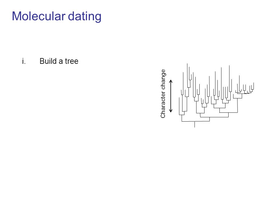 Molecular dating i.Build a tree = time