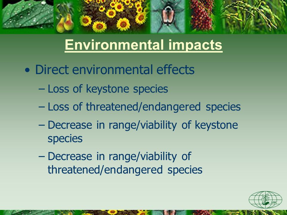 Environmental impacts Indirect environmental effects –Changes in habitat composition –Loss of habitat or nourishment for wildlife –Changes in soil structure or water table –Changes in ecosystem processes –Impacts of risk management options