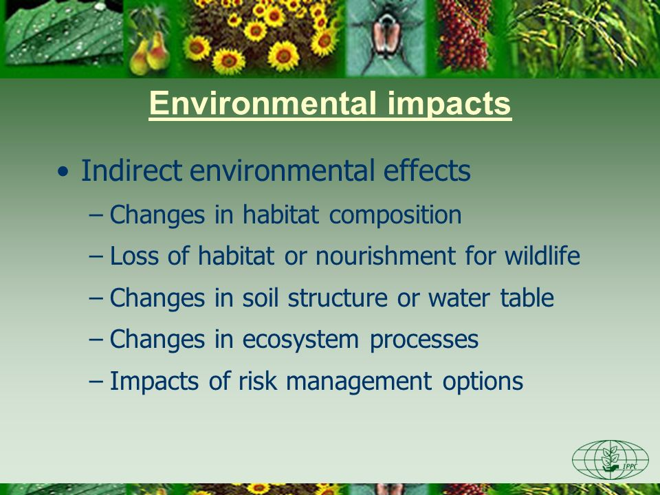 Environmental impact: tree death CFIA-ACIA