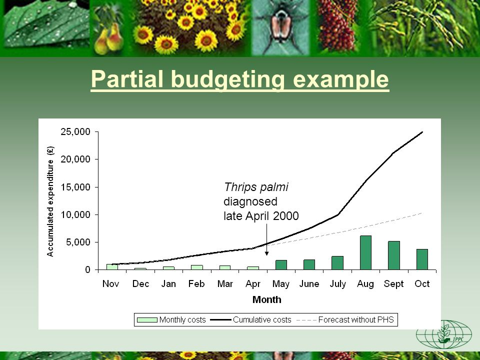 Partial budgeting example Sales were unaffected Extra production costs –Pesticide spray costs –Soil fumigation costs (methyl bromide) –Treated compost –Plastic sheeting – additional labour Margin fell by between 13 and 18%