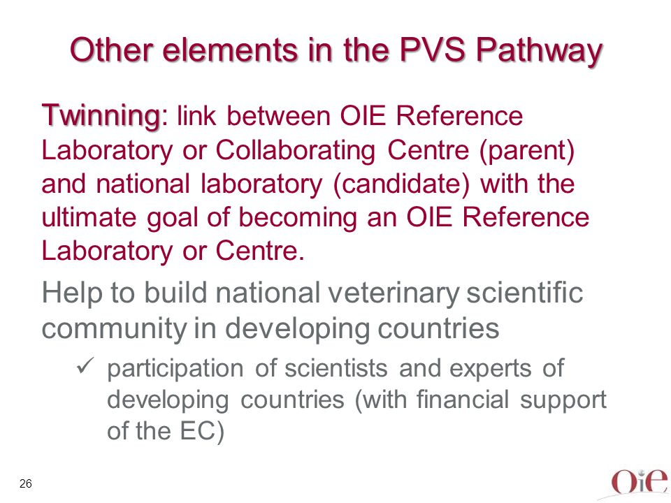 OIE Twinning Initiative Better global geographical coverage Regional support Improved access for more countries (focus on developing and transition countries) to diagnostics and expertise and to participate in OIE standard setting process 27