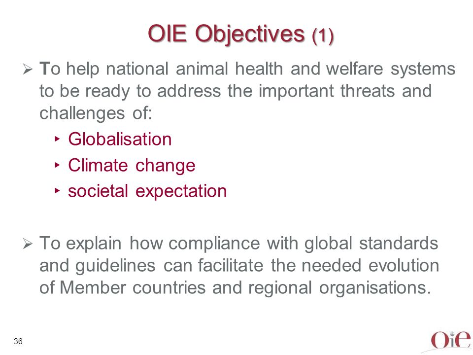 37 OIE Objectives (2) To present the different tools available to OIE Member Countries To present the different tools available to OIE Member Countries: the OIE PVS Pathway and the global capacity building programme OIE Veterinary Legislation Strengthening Programme, as part of the PVS Pathway Twinning programme for laboratories and other institutes OIE Veterinary Education Initiative promotion of the important role of Veterinary Statutory Bodies