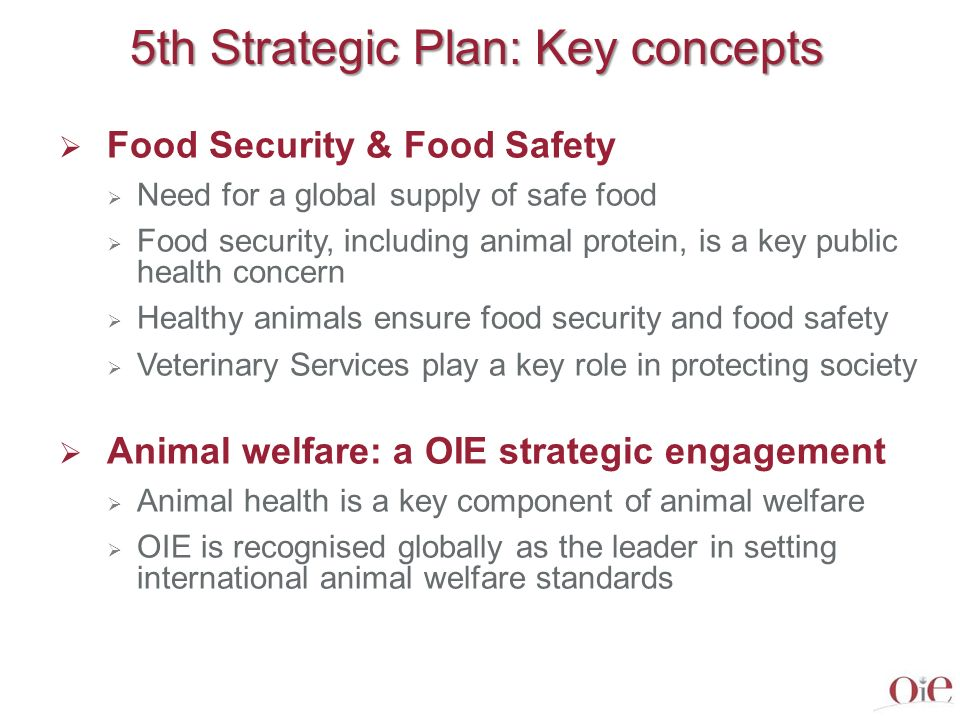 5th Strategic Plan: Key concepts Veterinary education The quality of veterinarians is essential for protection of society Recognition of veterinary diploma and professional excellence OIE Global Conference on Veterinary Education (and follow up) Good Governance of Veterinary Services Need for appropriate legislation and implementation through national animal health systems A responsibility of Government Alliances between public and private sectors (farmers, consumers) Quality of Services: use of OIE PVS evaluation and PVS Gap Analysis tools Initial and ongoing veterinary education