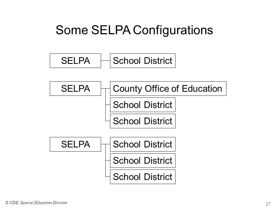 How Services Are Provided By one or more districts and/or the County Office of Education Programs within the SELPA usually offer multiple options, based on the needs of the child –Special Day Classes –Co-located programs –Individual and Small Group (DIS and RSP) –Itinerant Support to children in regular preschool programs (DIS and RSP) © CDE, Special Education Division 18