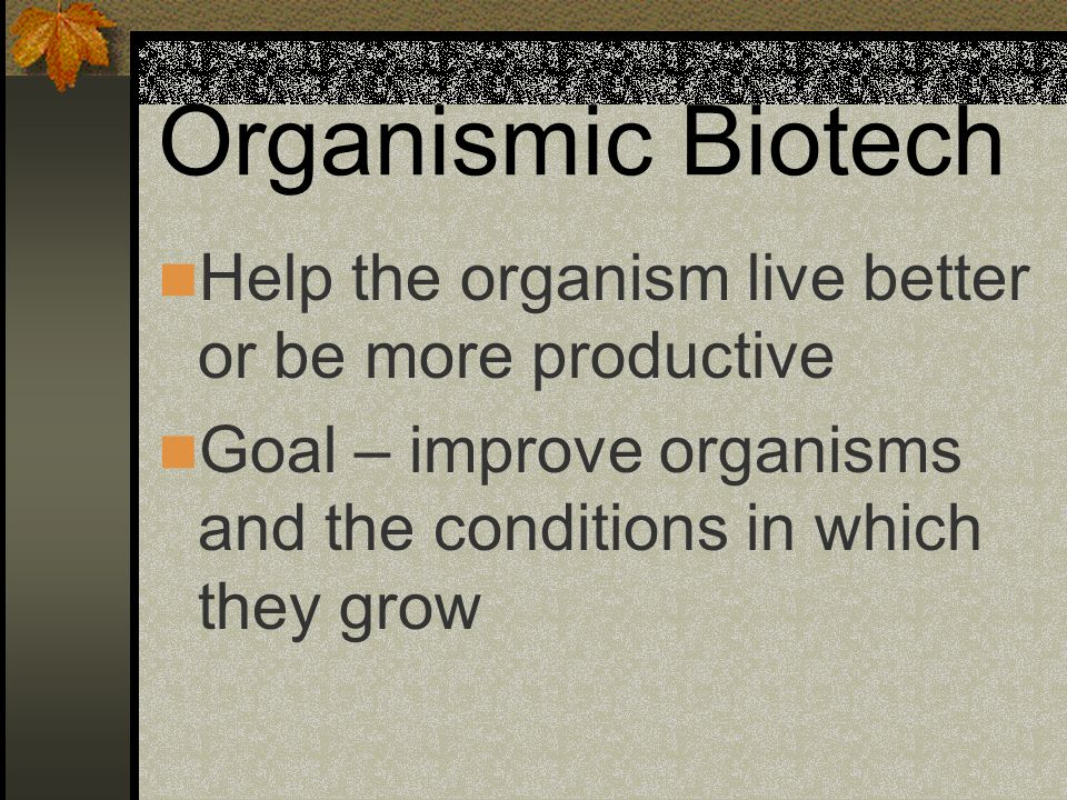 Organismic Biotech Study and use natural genetic variations Cloning is an example of organismic biotech