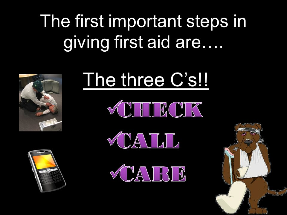 The first important steps in giving first aid are…. The three Cs!!