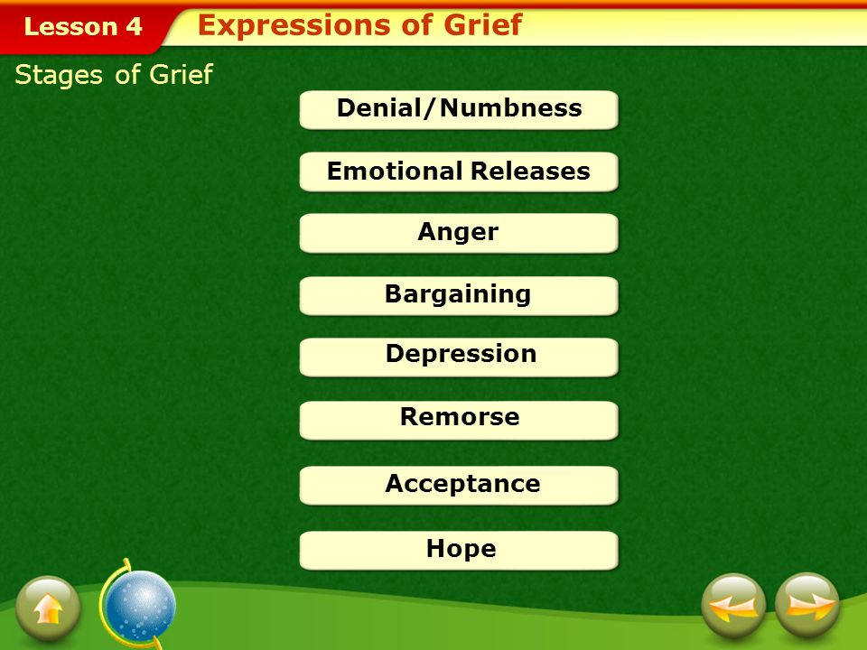 Lesson 4 Stages of Grief Denial/Numbness Emotional Releases Anger Bargaining Depression Remorse Acceptance Hope Expressions of Grief