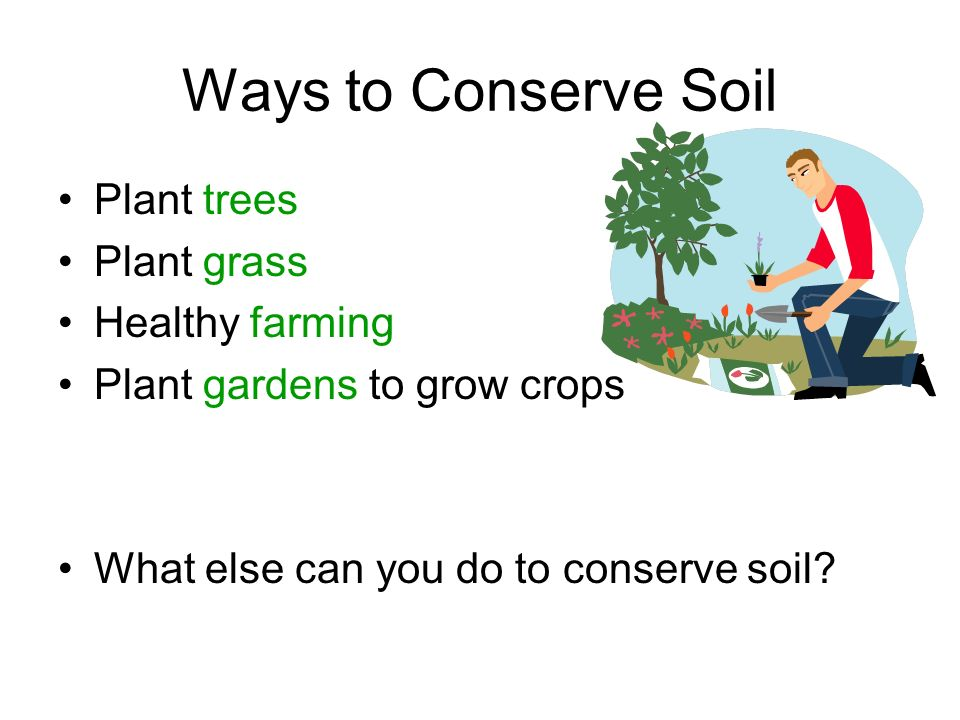 Ways to Conserve Soil Plant trees Plant grass Healthy farming Plant gardens to grow crops What else can you do to conserve soil?