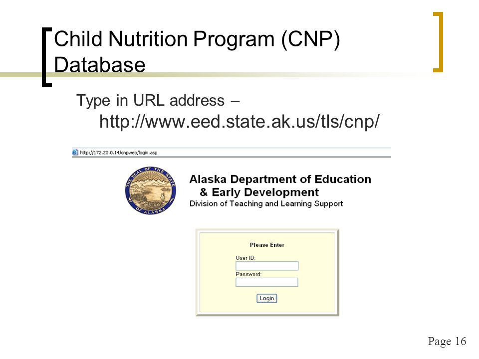 Page 17 Child Nutrition Program (CNP) Database