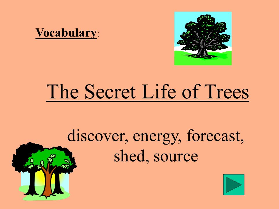 Vocabulary : The Secret Life of Trees discover, energy, forecast, shed, source